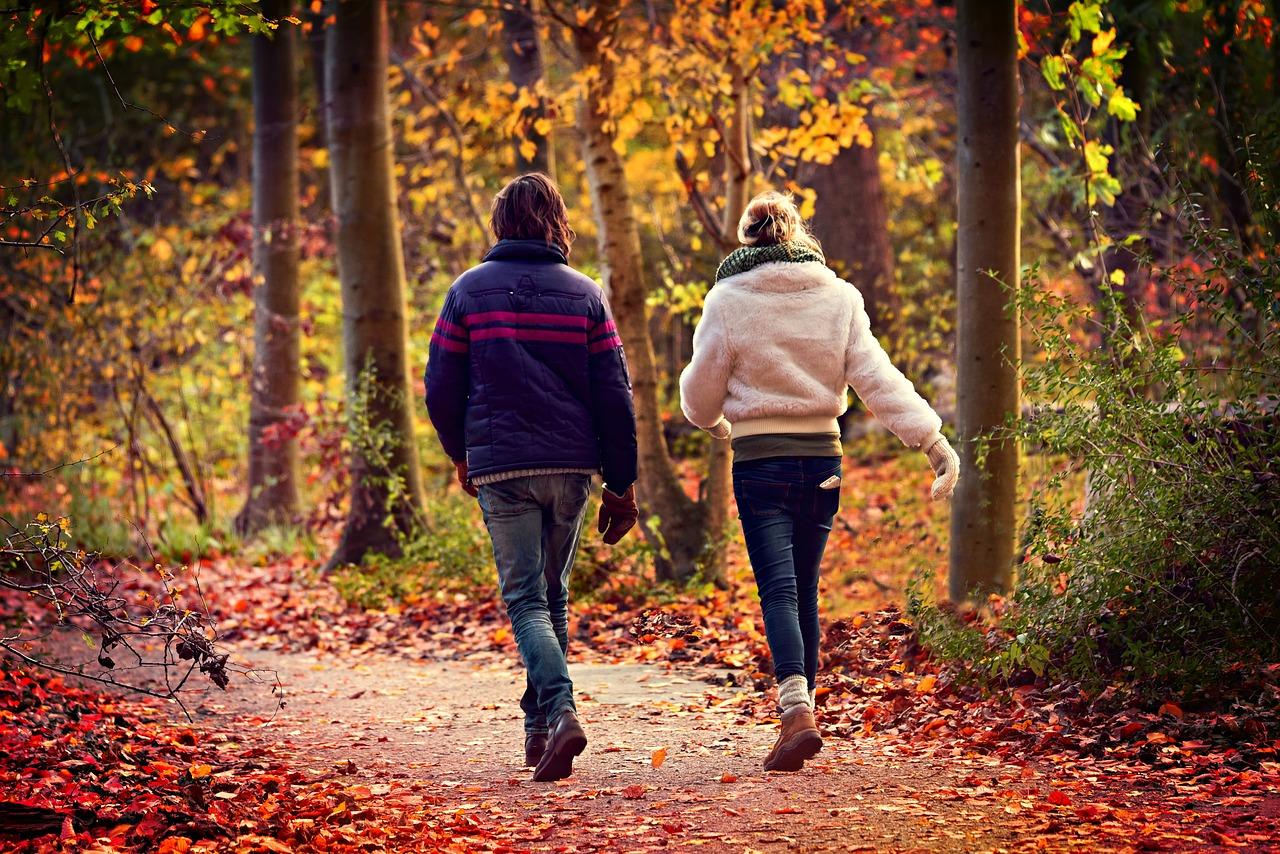 бързо ходене пеша